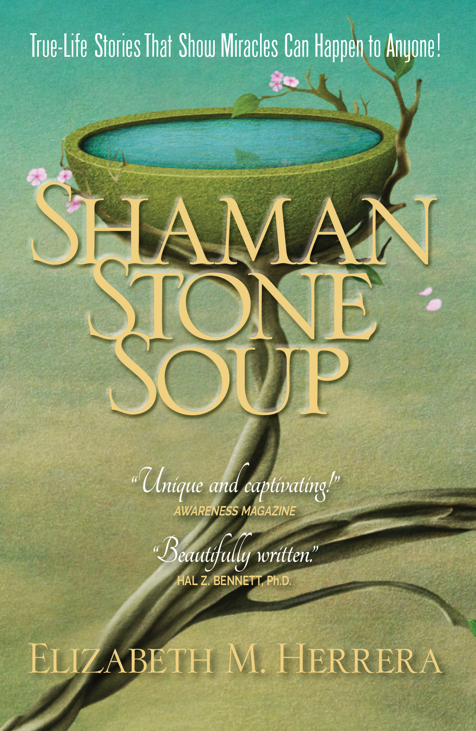 Shaman Stone Soup Cover-2017.indd